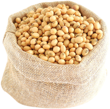 Sack of Soybeans